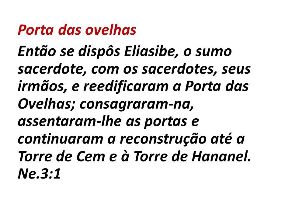 Porta das ovelhas Então se dispôs Eliasibe, o sumo sacerdote, com os sacerdotes, seus irmãos, e reedificaram a Porta das Ovelhas; consagraram-na, asse