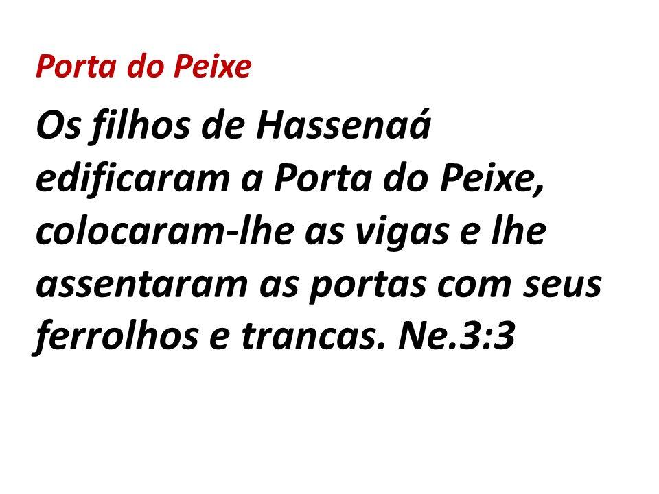 Porta do Peixe Os filhos de Hassenaá edificaram a Porta do Peixe, colocaram-lhe as vigas e lhe assentaram as portas com seus ferrolhos e trancas. Ne.3