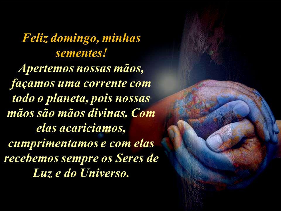 E benditas sejam minhas sementes amadas que com suas mãos, em 5 minutos curam o corpo, alimentam o espírito, curam e orientam a Alma para o Caminho da