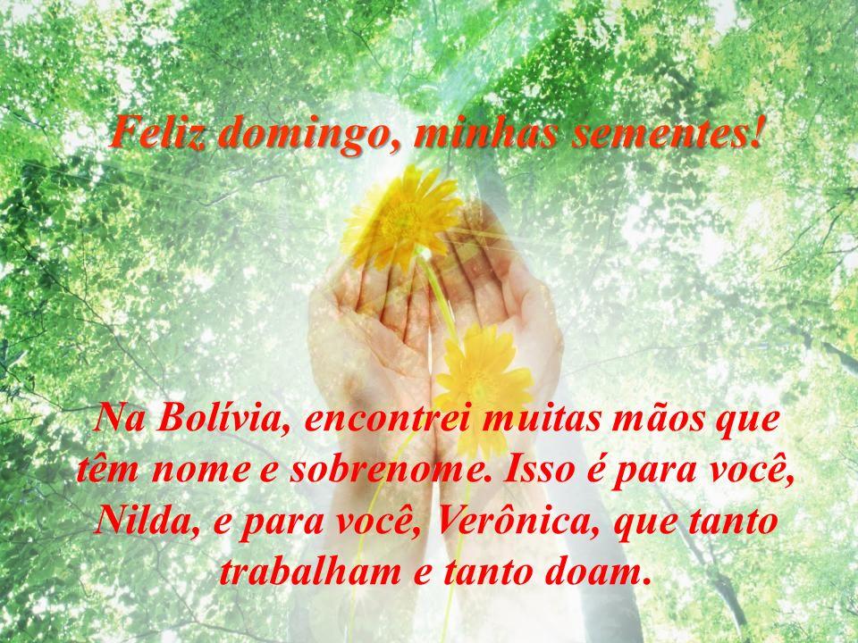Feliz domingo, minhas sementes! Apertemos nossas mãos, façamos uma corrente com todo o planeta, pois nossas mãos são mãos divinas. Com elas acariciamo