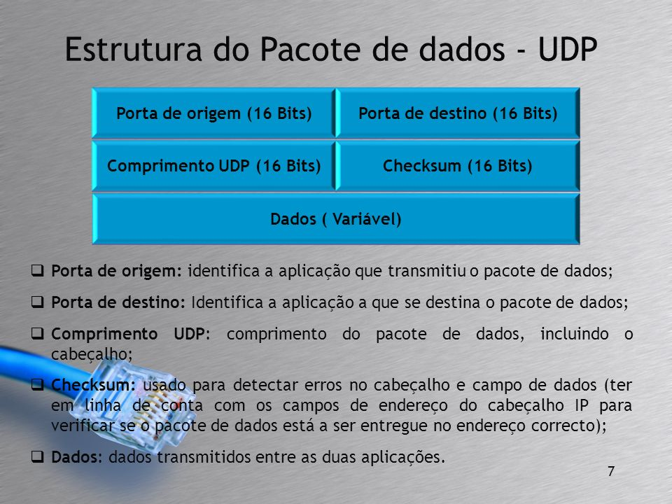 Porta de origem: identifica a aplicação que transmitiu o pacote de dados; Porta de destino: Identifica a aplicação a que se destina o pacote de dados;