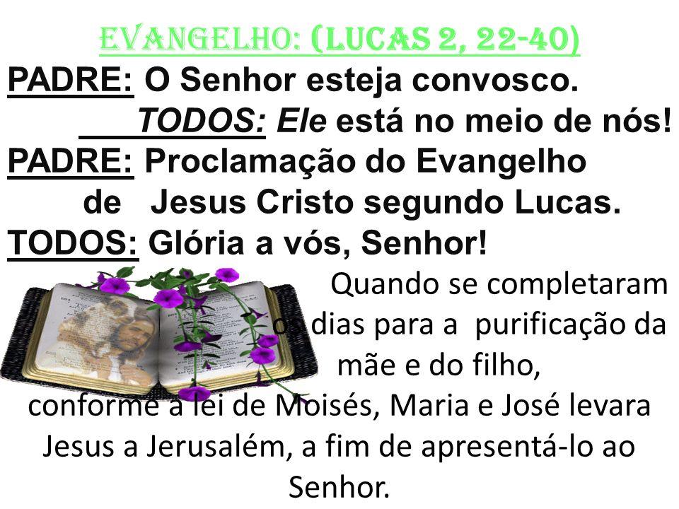 EVANGELHO: (LUCAS 2, 22-40 ) PADRE: O Senhor esteja convosco. TODOS: Ele está no meio de nós! PADRE: Proclamação do Evangelho de Jesus Cristo segundo