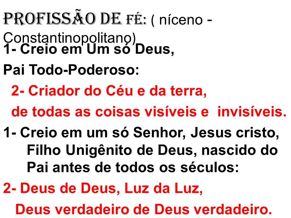 Profissão de Fé: ( níceno - Constantinopolitano ) 1- Creio em Um só Deus, Pai Todo-Poderoso: 2- Criador do Céu e da terra, de todas as coisas visíveis