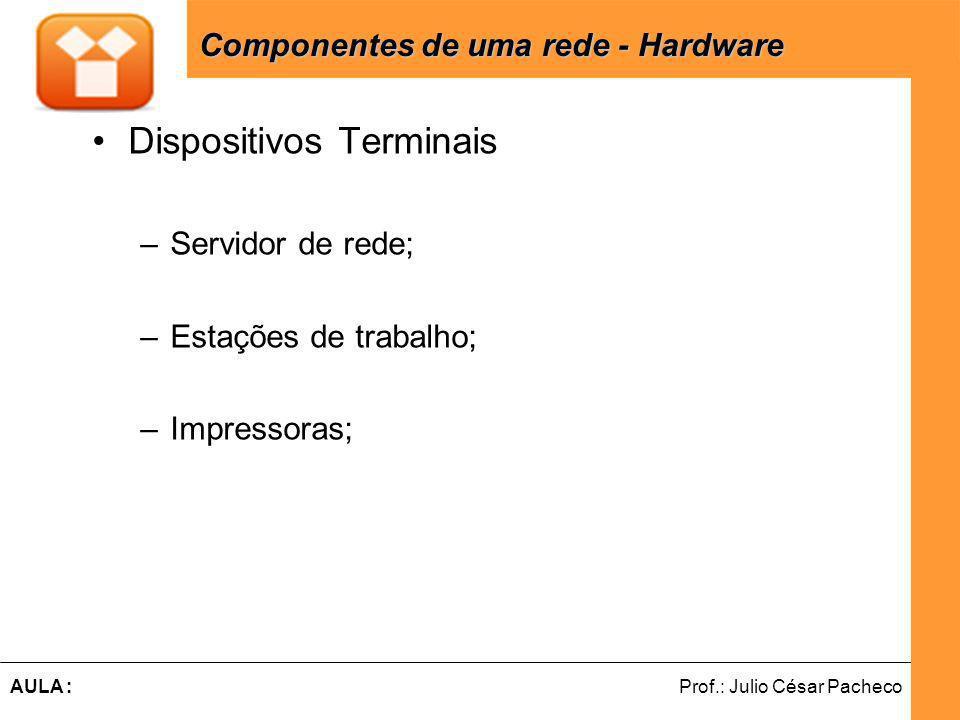 Ferramentas de Desenvolvimento Web Prof.: Julio César PachecoAULA : Dispositivos Terminais –Servidor de rede; –Estações de trabalho; –Impressoras; Componentes de uma rede - Hardware Componentes de uma rede - Hardware