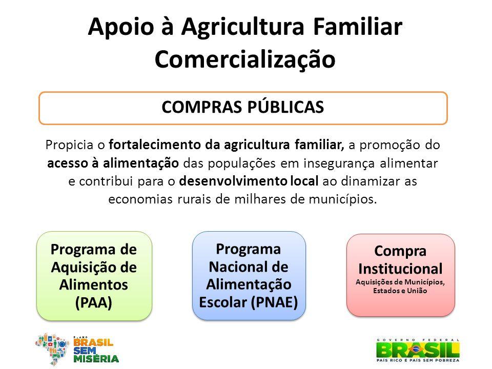 Apoio à Agricultura Familiar Comercialização COMPRAS PÚBLICAS Programa de Aquisição de Alimentos (PAA) Programa Nacional de Alimentação Escolar (PNAE)