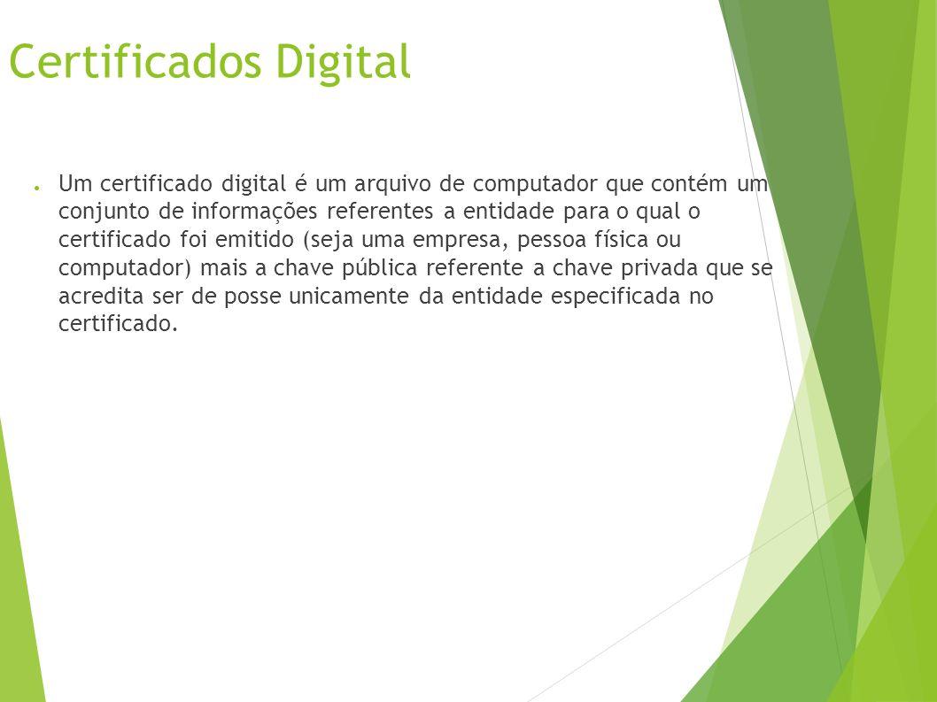 Certificados Digital Um certificado digital é um arquivo de computador que contém um conjunto de informações referentes a entidade para o qual o certificado foi emitido (seja uma empresa, pessoa física ou computador) mais a chave pública referente a chave privada que se acredita ser de posse unicamente da entidade especificada no certificado.