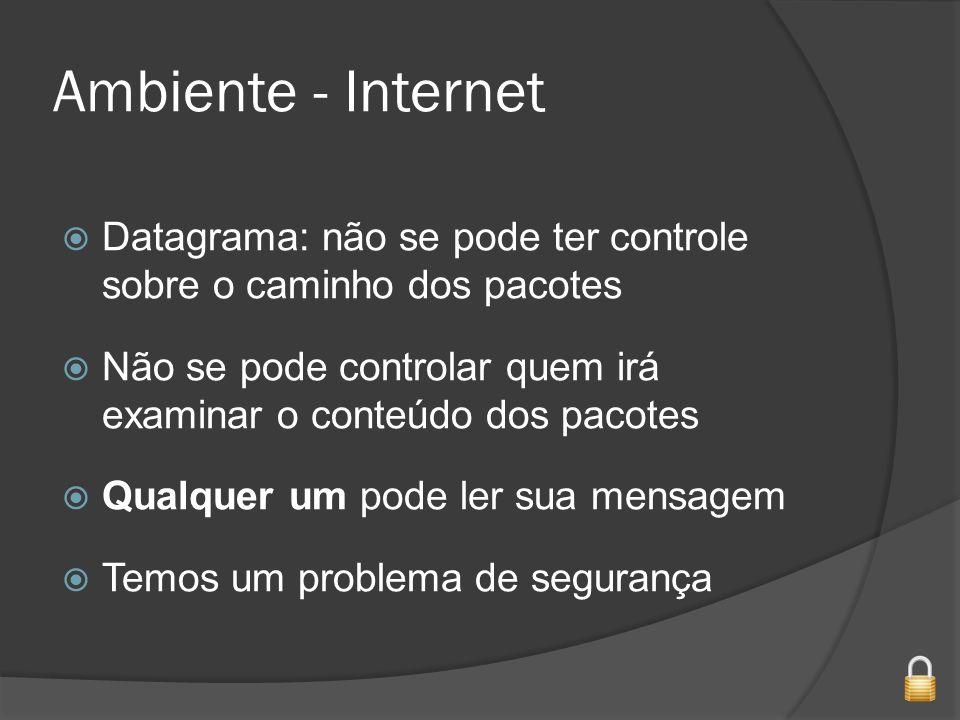 Ambiente - Internet Datagrama: não se pode ter controle sobre o caminho dos pacotes Não se pode controlar quem irá examinar o conteúdo dos pacotes Qualquer um pode ler sua mensagem Temos um problema de segurança
