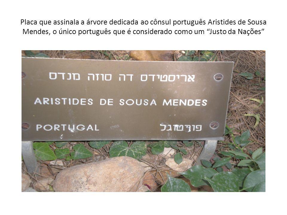 Placa que assinala a árvore dedicada ao cônsul português Aristides de Sousa Mendes, o único português que é considerado como um Justo da Nações