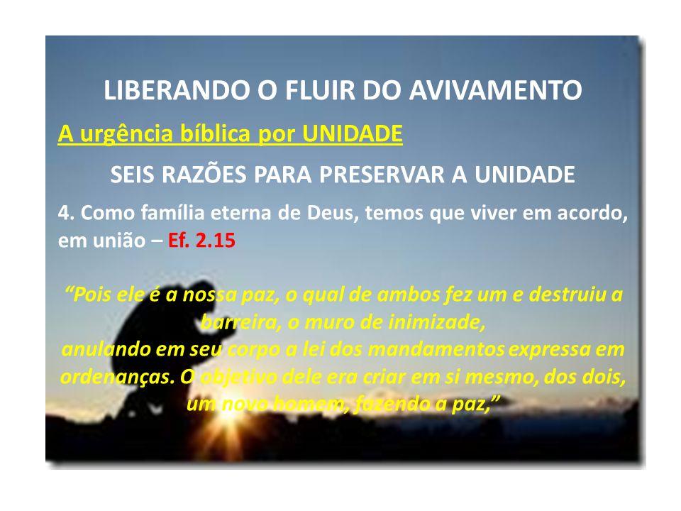 LIBERANDO O FLUIR DO AVIVAMENTO A urgência bíblica por UNIDADE SEIS RAZÕES PARA PRESERVAR A UNIDADE 4. Como família eterna de Deus, temos que viver em
