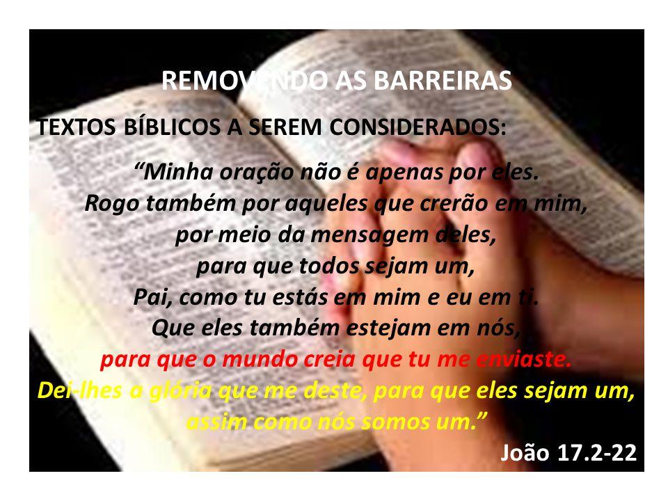 REMOVENDO AS BARREIRAS TEXTOS BÍBLICOS A SEREM CONSIDERADOS: Minha oração não é apenas por eles. Rogo também por aqueles que crerão em mim, por meio d