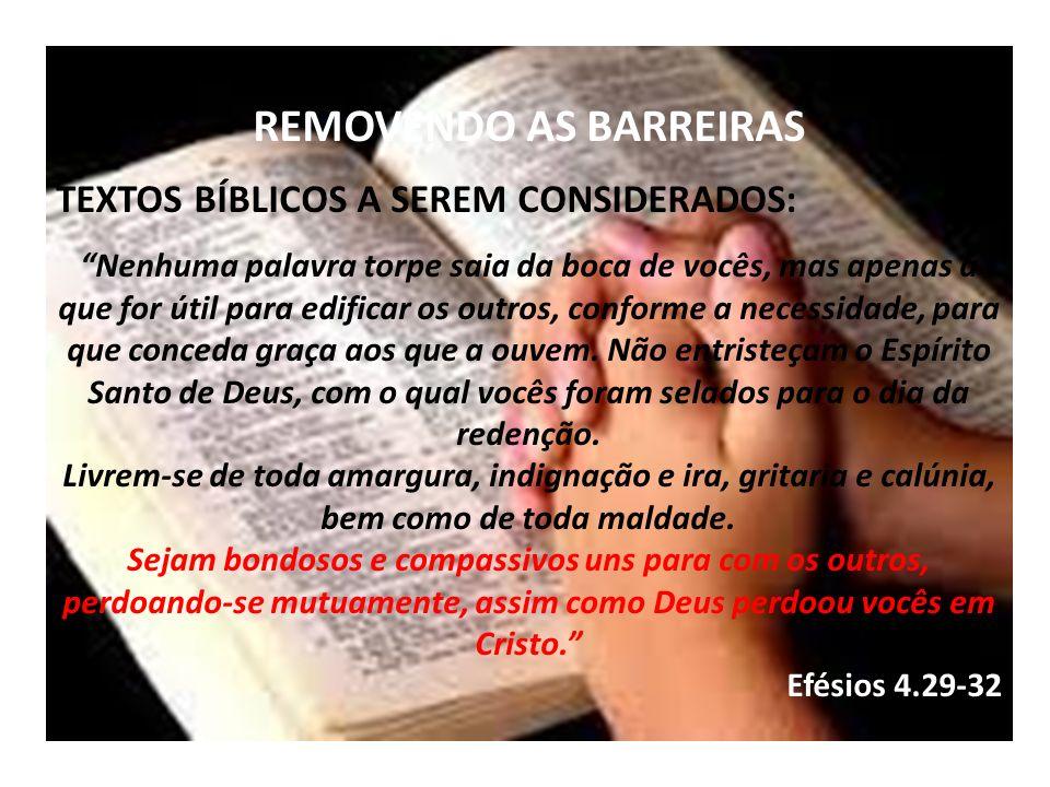 REMOVENDO AS BARREIRAS TEXTOS BÍBLICOS A SEREM CONSIDERADOS: Nenhuma palavra torpe saia da boca de vocês, mas apenas a que for útil para edificar os o