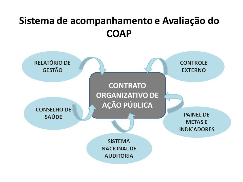 CONTRATO ORGANIZATIVO DE AÇÃO PÚBLICA RELATÓRIO DE GESTÃO CONSELHO DE SAÚDE PAINEL DE METAS E INDICADORES SISTEMA NACIONAL DE AUDITORIA CONTROLE EXTER