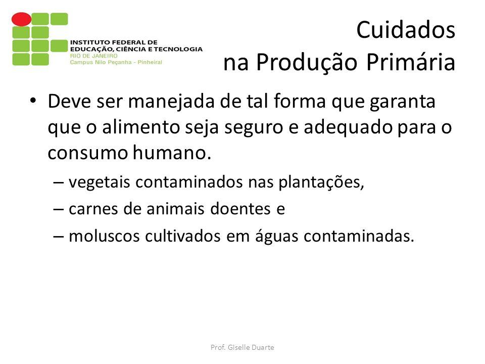 Cuidados na Produção Primária Deve ser manejada de tal forma que garanta que o alimento seja seguro e adequado para o consumo humano.