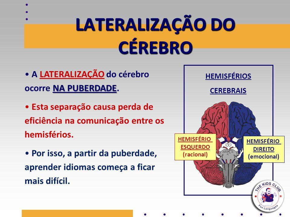LATERALIZAÇÃO DO CÉREBRO HEMISFÉRIOS CEREBRAIS NA PUBERDADE A LATERALIZAÇÃO do cérebro ocorre NA PUBERDADE. Esta separação causa perda de eficiência n
