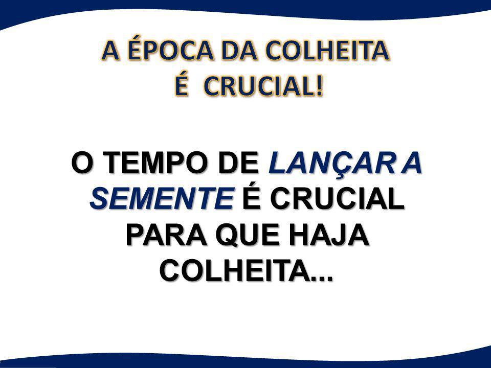 O TEMPO DE LANÇAR A SEMENTE É CRUCIAL PARA QUE HAJA COLHEITA...