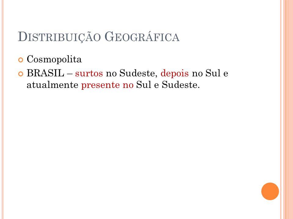 D ISTRIBUIÇÃO G EOGRÁFICA Cosmopolita BRASIL – surtos no Sudeste, depois no Sul e atualmente presente no Sul e Sudeste.