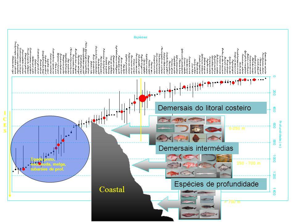 Species: ICESICES Coastal Epada preto, escamuda, melga, tubarões de prof. Demersais do litoral costeiro Demersais intermédias Espécies de profundidade