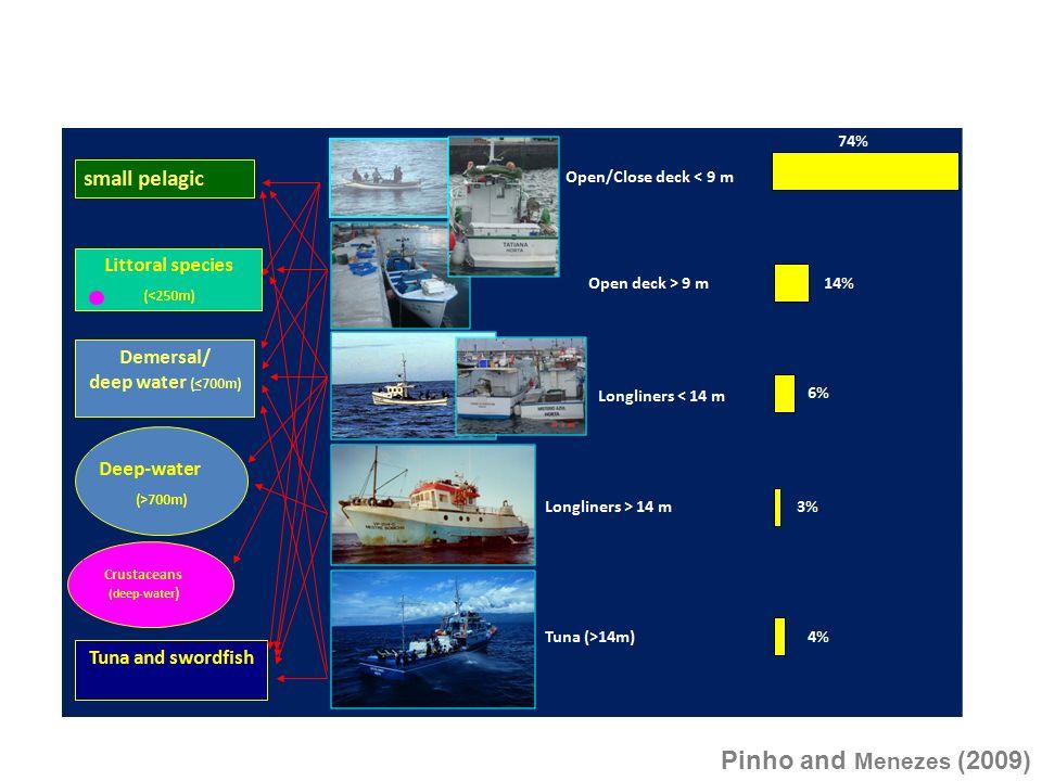 Fleets: Pinho and Menezes (2009)