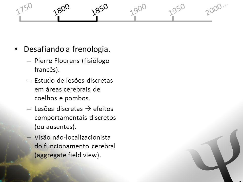 Desafiando a frenologia. – Pierre Flourens (fisiólogo francês). – Estudo de lesões discretas em áreas cerebrais de coelhos e pombos. – Lesões discreta