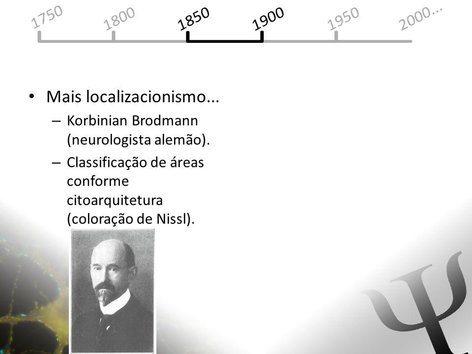 Mais localizacionismo... – Korbinian Brodmann (neurologista alemão). – Classificação de áreas conforme citoarquitetura (coloração de Nissl).