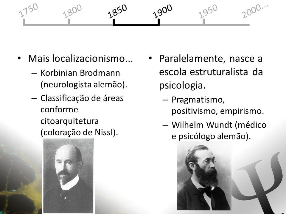Mais localizacionismo... – Korbinian Brodmann (neurologista alemão). – Classificação de áreas conforme citoarquitetura (coloração de Nissl). Paralelam