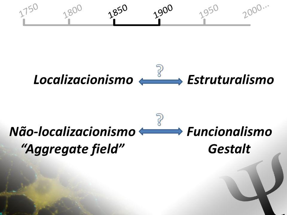 Estruturalismo Funcionalismo Gestalt Localizacionismo Não-localizacionismo Aggregate field