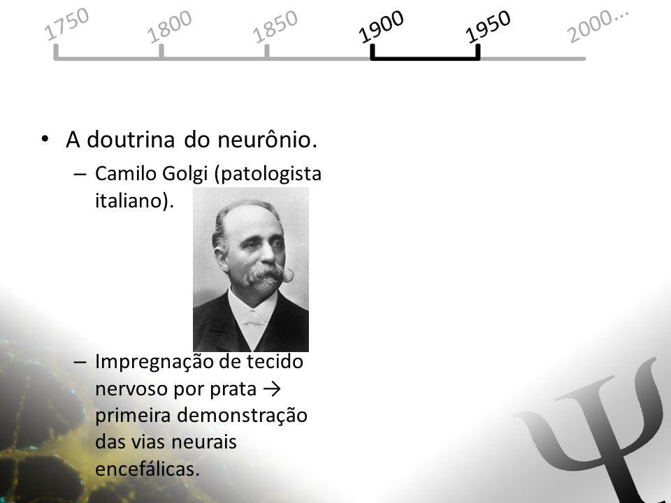 A doutrina do neurônio. – Camilo Golgi (patologista italiano). – Impregnação de tecido nervoso por prata primeira demonstração das vias neurais encefá