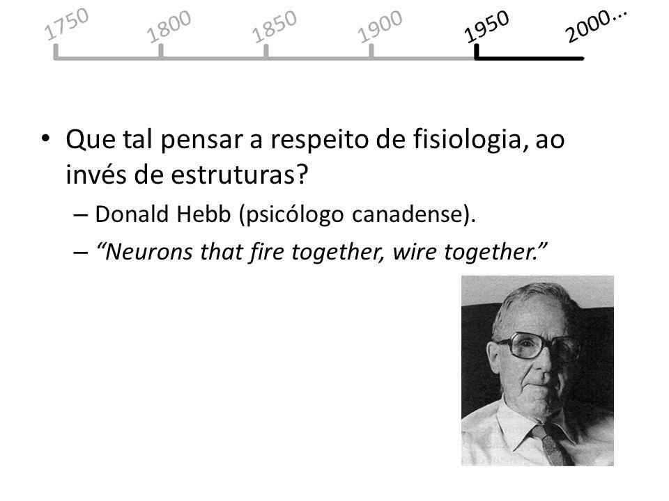 Que tal pensar a respeito de fisiologia, ao invés de estruturas? – Donald Hebb (psicólogo canadense). – Neurons that fire together, wire together.
