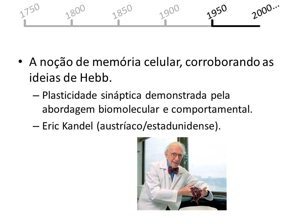 A noção de memória celular, corroborando as ideias de Hebb. – Plasticidade sináptica demonstrada pela abordagem biomolecular e comportamental. – Eric