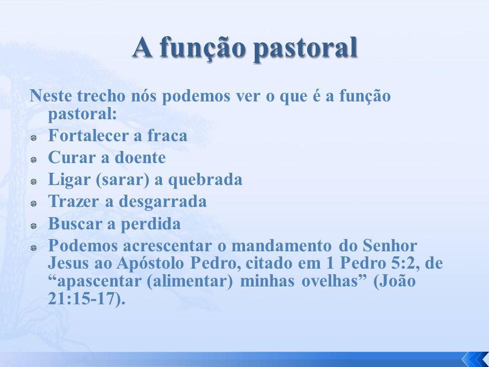 Neste trecho nós podemos ver o que é a função pastoral: Fortalecer a fraca Curar a doente Ligar (sarar) a quebrada Trazer a desgarrada Buscar a perdid
