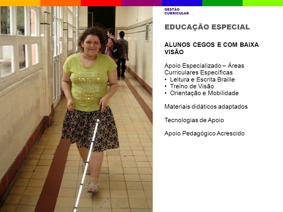 EDUCAÇÃO ESPECIAL ALUNOS CEGOS E COM BAIXA VISÃO Apoio Especializado – Áreas Curriculares Específicas Leitura e Escrita Braille Treino de Visão Orient