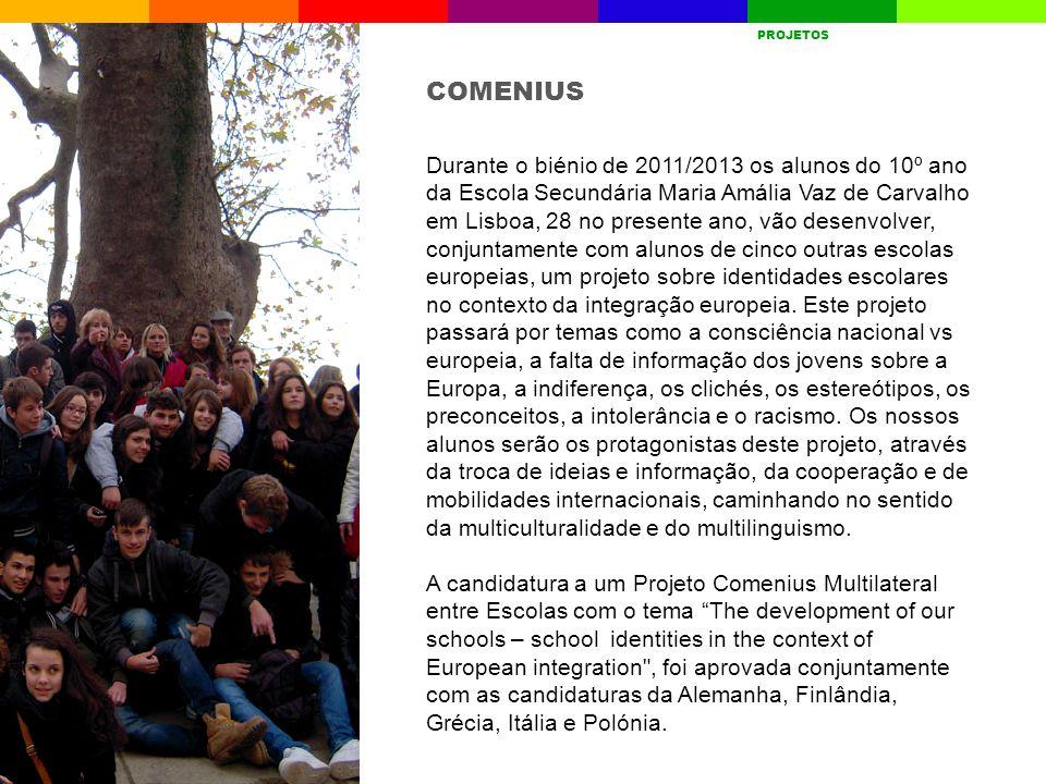 Durante o biénio de 2011/2013 os alunos do 10º ano da Escola Secundária Maria Amália Vaz de Carvalho em Lisboa, 28 no presente ano, vão desenvolver, c