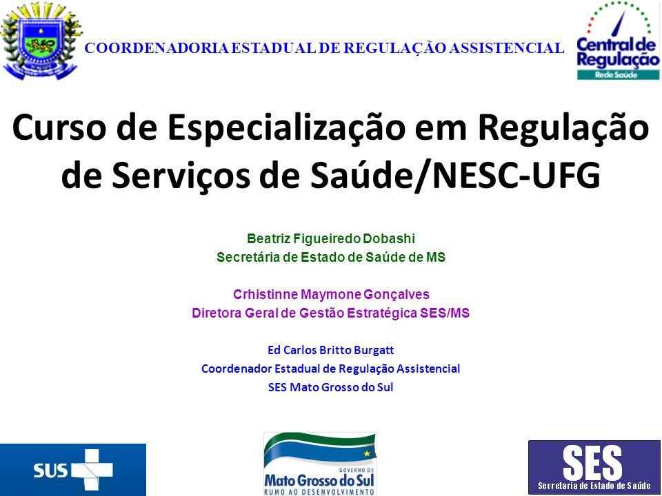 Curso de Especialização em Regulação de Serviços de Saúde/NESC-UFG Beatriz Figueiredo Dobashi Secretária de Estado de Saúde de MS Crhistinne Maymone G