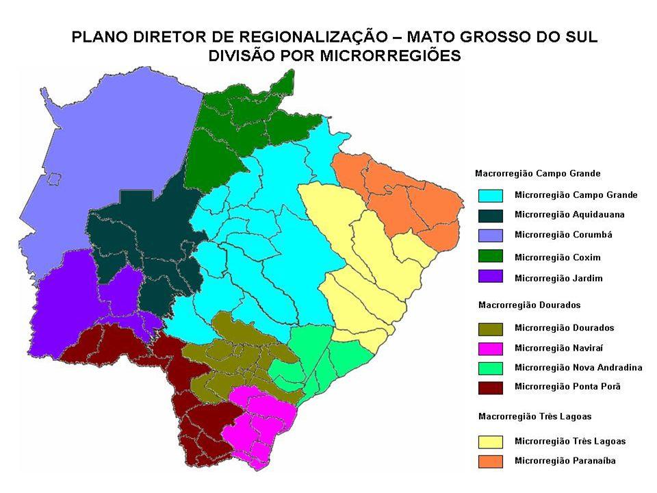 Dos 78 municípios do Estado de Mato Grosso do Sul 53 (69%) possuem população até vinte mil habitantes.