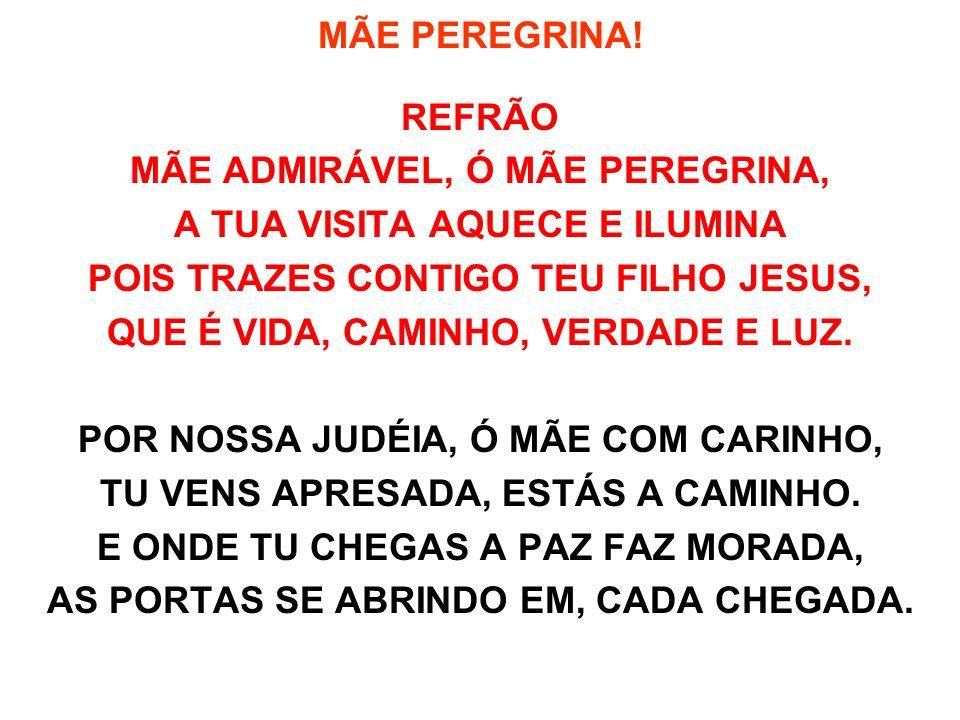 MÃE PEREGRINA! REFRÃO MÃE ADMIRÁVEL, Ó MÃE PEREGRINA, A TUA VISITA AQUECE E ILUMINA POIS TRAZES CONTIGO TEU FILHO JESUS, QUE É VIDA, CAMINHO, VERDADE