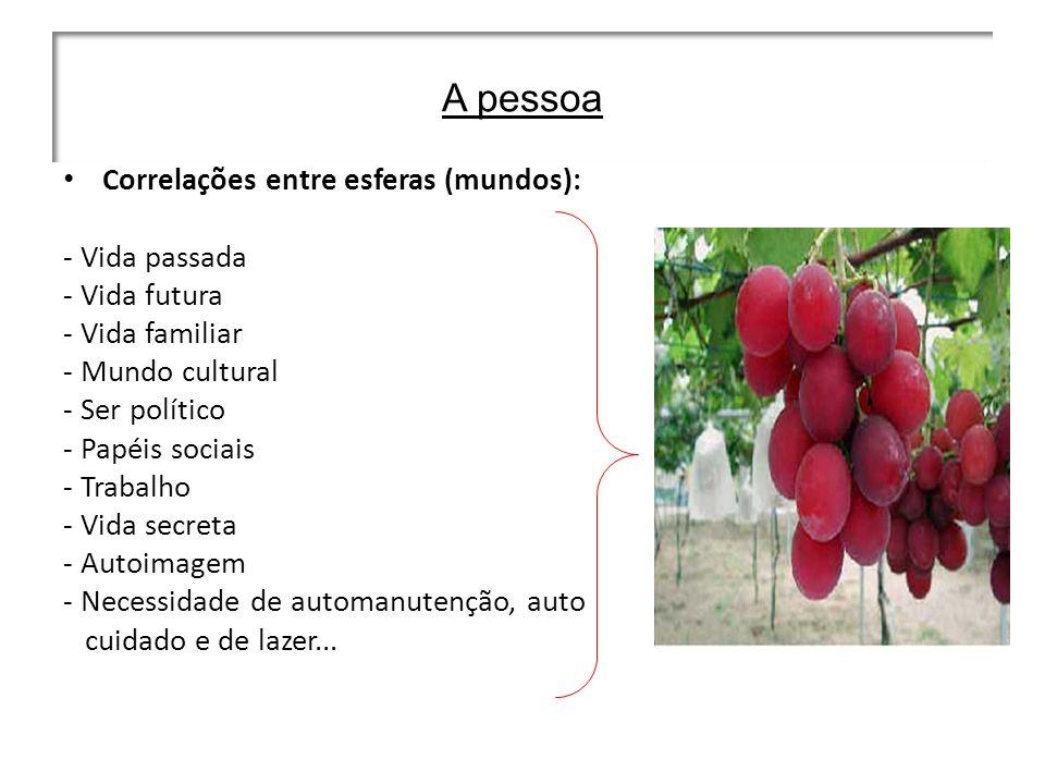 A pessoa Correlações entre esferas (mundos): - Vida passada - Vida futura - Vida familiar - Mundo cultural - Ser político - Papéis sociais - Trabalho