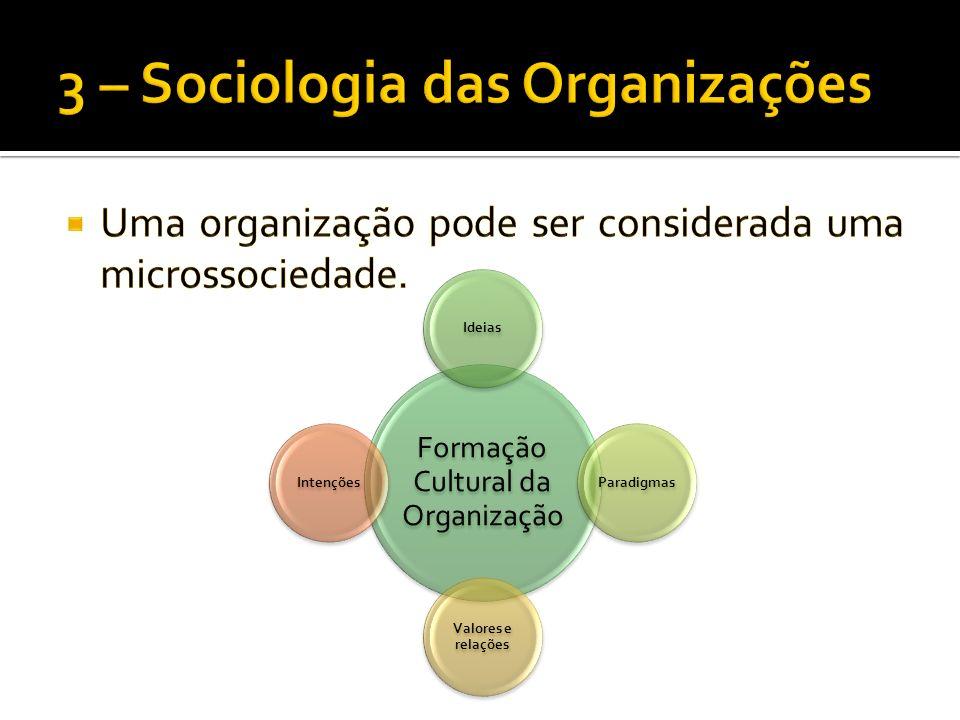 Formação Cultural da Organização IdeiasParadigmas Valores e relações Intenções
