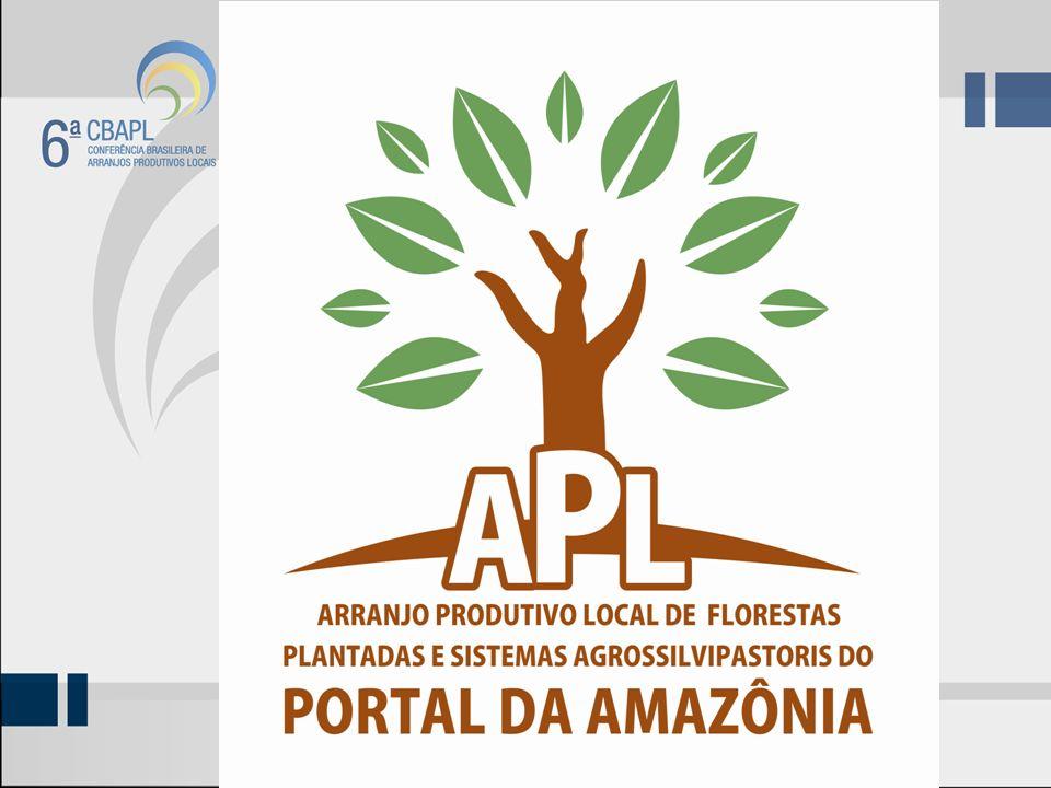 APL - MISSÃO Trabalhar para o desenvolvimento regional do complexo agroindustrial das Florestas Plantadas e Sistemas Agrossilvipastoris, adequada às condições socioeconômica, e de indústria tecnológica, com base no tripé da sustentabilidade: Socialmente justo, Ambientalmente aceitável e Economicamente viável.