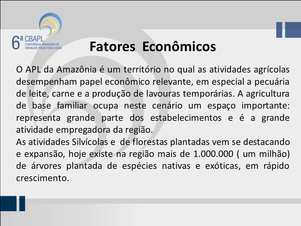 Fatores Econômicos O APL da Amazônia é um território no qual as atividades agrícolas desempenham papel econômico relevante, em especial a pecuária de leite, carne e a produção de lavouras temporárias.
