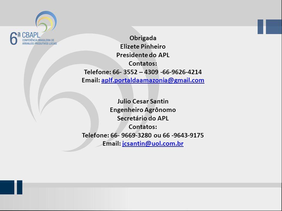 Obrigada Elizete Pinheiro Presidente do APL Contatos: Telefone: 66- 3552 – 4309 -66-9626-4214 Email: aplf.portaldaamazonia@gmail.comaplf.portaldaamazonia@gmail.com Julio Cesar Santin Engenheiro Agrônomo Secretário do APL Contatos: Telefone: 66- 9669-3280 ou 66 -9643-9175 Email: jcsantin@uol.com.brjcsantin@uol.com.br