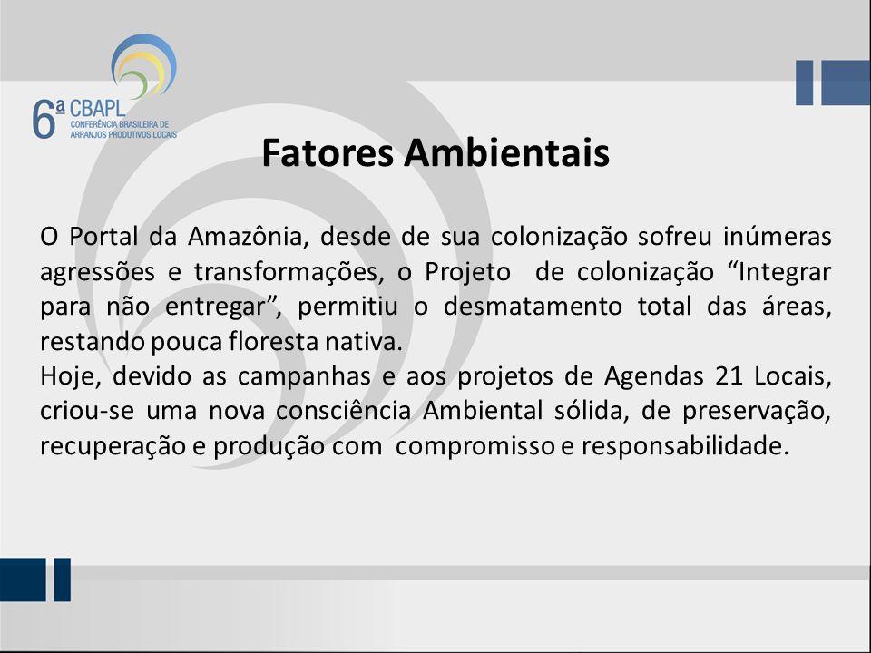 Fatores Ambientais O Portal da Amazônia, desde de sua colonização sofreu inúmeras agressões e transformações, o Projeto de colonização Integrar para não entregar, permitiu o desmatamento total das áreas, restando pouca floresta nativa.