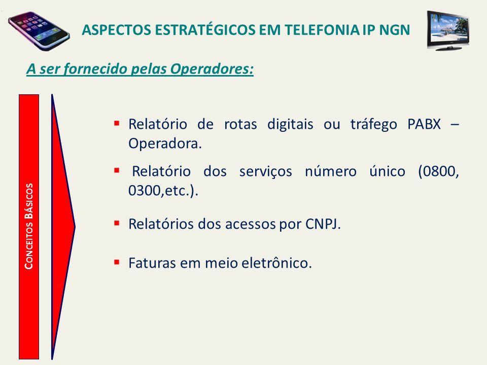 ASPECTOS ESTRATÉGICOS EM TELEFONIA IP NGN C ONCEITOS B ÁSICOS A ser fornecido pelas Operadores: Relatório de rotas digitais ou tráfego PABX – Operador