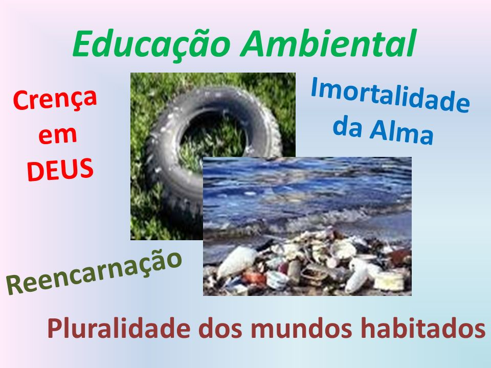Educação Ambiental Crença em DEUS Imortalidade da Alma Reencarnação Pluralidade dos mundos habitados