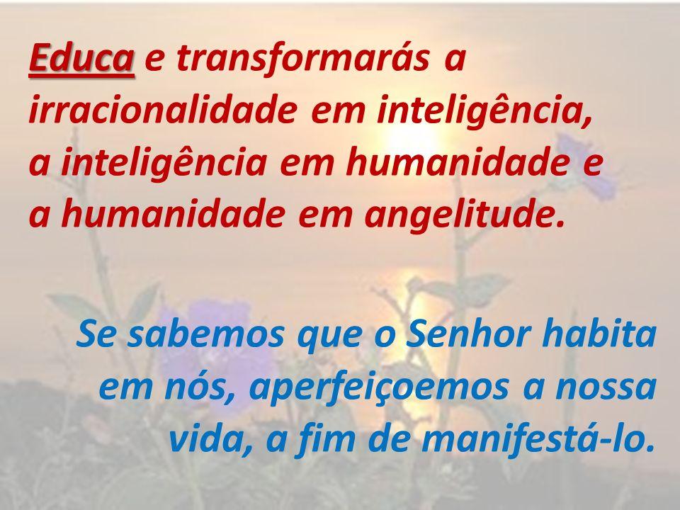 Educa Educa e transformarás a irracionalidade em inteligência, a inteligência em humanidade e a humanidade em angelitude. Se sabemos que o Senhor habi