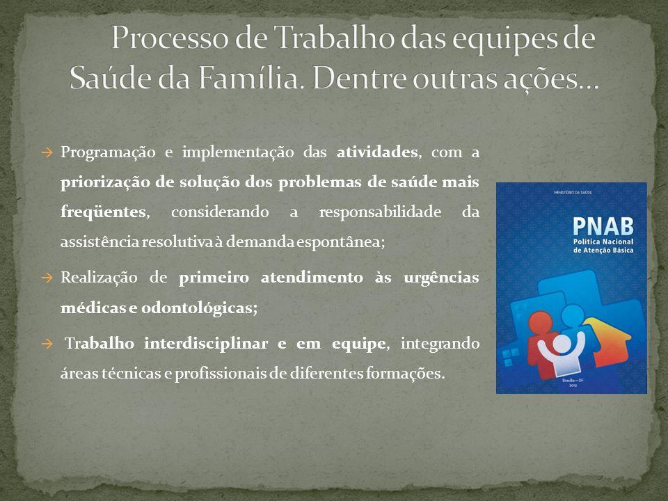 Programação e implementação das atividades, com a priorização de solução dos problemas de saúde mais freqüentes, considerando a responsabilidade da as