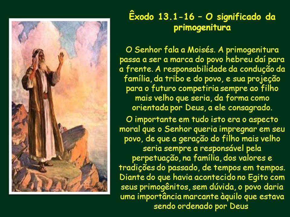 Êxodo 13.1-16 – O significado da primogenitura O Senhor fala a Moisés. A primogenitura passa a ser a marca do povo hebreu daí para a frente. A respons