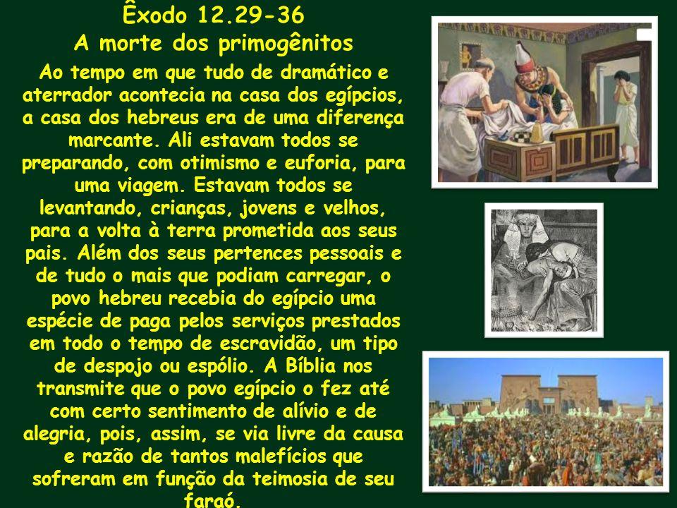 Êxodo 12.29-36 A morte dos primogênitos Ao tempo em que tudo de dramático e aterrador acontecia na casa dos egípcios, a casa dos hebreus era de uma di
