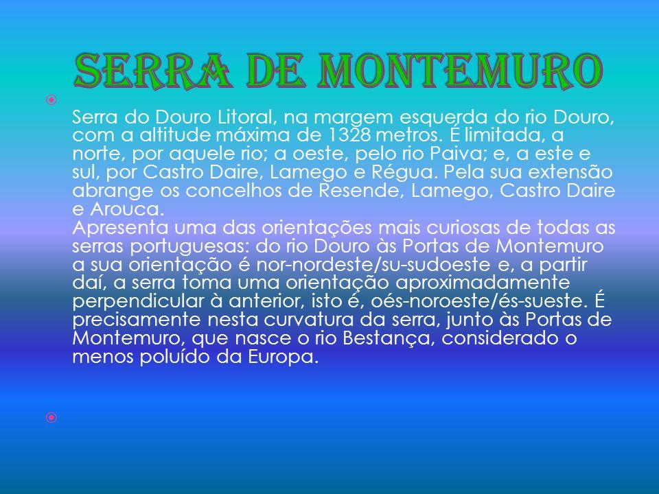 Serra do Douro Litoral, na margem esquerda do rio Douro, com a altitude máxima de 1328 metros. É limitada, a norte, por aquele rio; a oeste, pelo rio