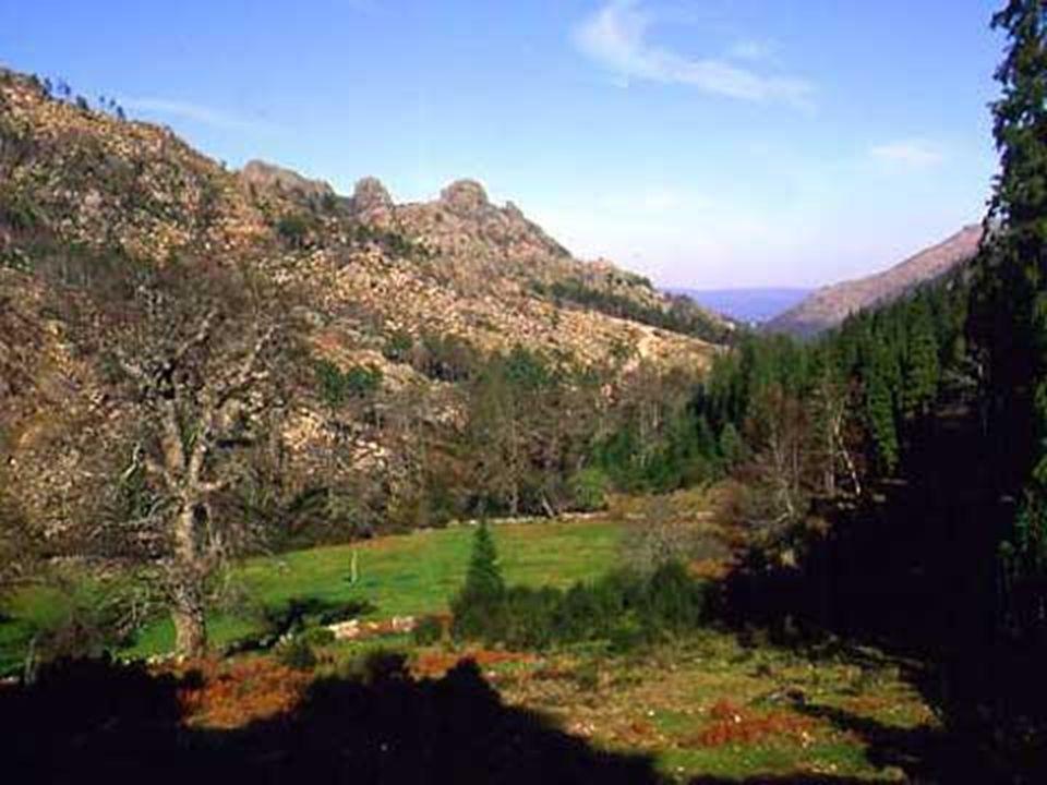 As montanhas são grandes elevações de terreno.