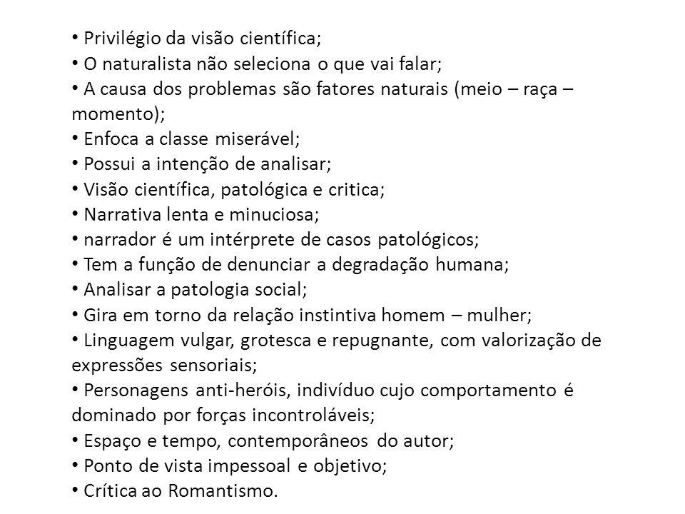 Privilégio da visão científica; O naturalista não seleciona o que vai falar; A causa dos problemas são fatores naturais (meio – raça – momento); Enfoc